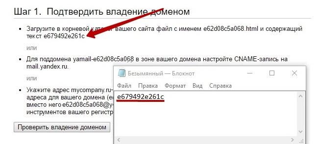 Содержимое файла для подтверждения владения доменом